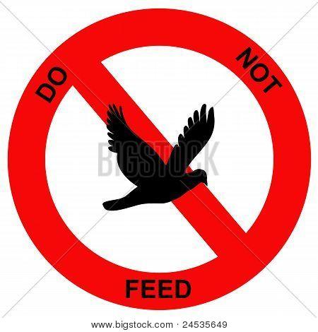 Forbidden birds