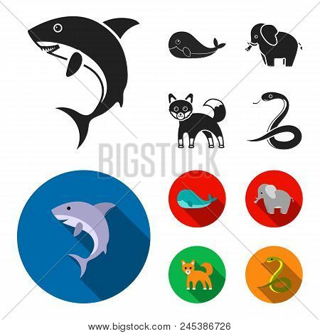 Whale, Elephant, Snake, Fox.animal Set Collection Icons In Black, Flat Style Vector Symbol Stock Ill