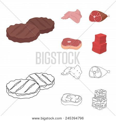 Chicken Wings, Ham, Raw Steak, Beef Cubes. Meat Set Collection Icons In Cartoon, Outline Style Vecto