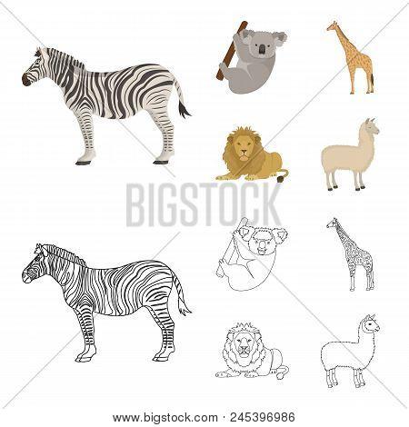 African Zebra, Animal Koala, Giraffe, Wild Predator, Lion. Wild Animals Set Collection Icons In Cart