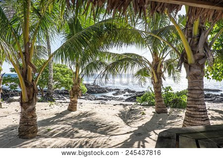 View From A Tropical Bar Onto Sandy And Rocky Beach With Palm Trees On Upolu Island, Western Samoa,