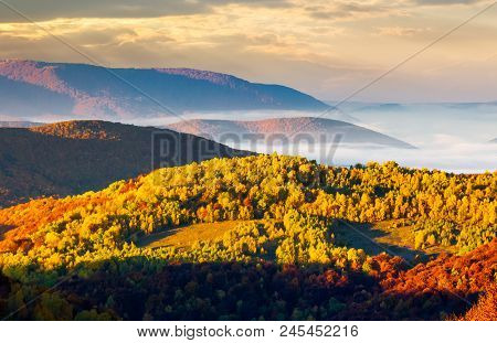 Cloud Inversion In Autumn Mountains. Beautiful Morning Scenery Of Carpathian Mountains. Colorful Fol