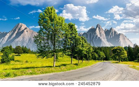 Row Of Trees Along The Road In To The Mountains. Composite Mountainous Landscape With Rocky Peaks In