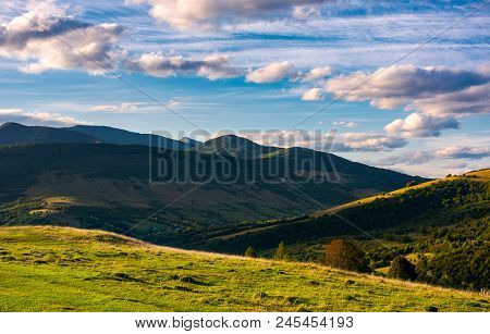 Beautiful Mountain Landscape In Afternoon. Grassy Meadow And Forested Hills Of Carpathian Mountains.