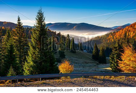 Balileasa Valley Of Apuseni Mountains. Gorgeous Autumn Sunrise With Glowing Fog Among The Spruce For