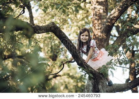 Child Smile On Tree Branch, Childhood. Small Girl Climb Tree In Summer Garden, Activity. Vacation, A