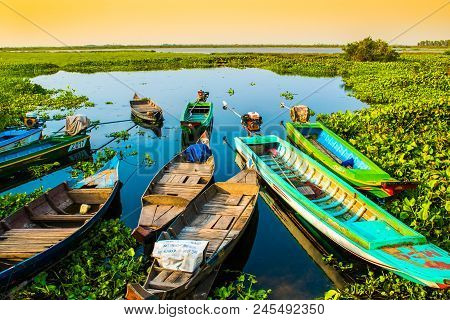 Alone beautiful colorful boats on lake, Lotus Farm, Phnom Krom in Cambodia poster