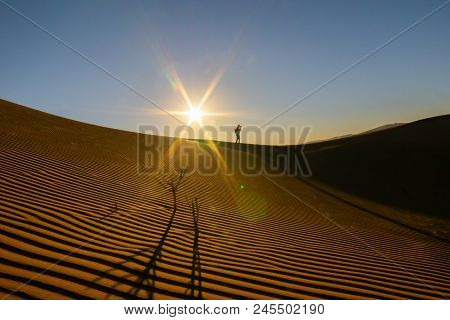 Lone Silhouette Figure Of Photographer On Ridge Above Wind Formed Ripples And Shadow Defined Edges I
