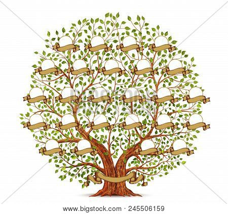 Family Tree Template Vintage Isolated Vector Illustration