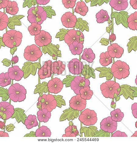Mallow Flower Graphic Color Sketch Seamless Pattern Background Illustration Vector