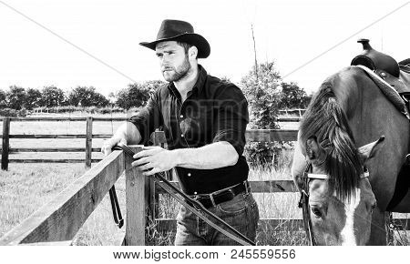 Good Looking, Hunky Cowboy Standing On Front Of His Stallion,  Horse With Boots, Black Shirt And Hat