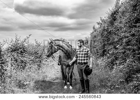 Good Looking, Hunky Cowboy With Boots, Chequered Shirt And Hat, Walks Next To His Horse
