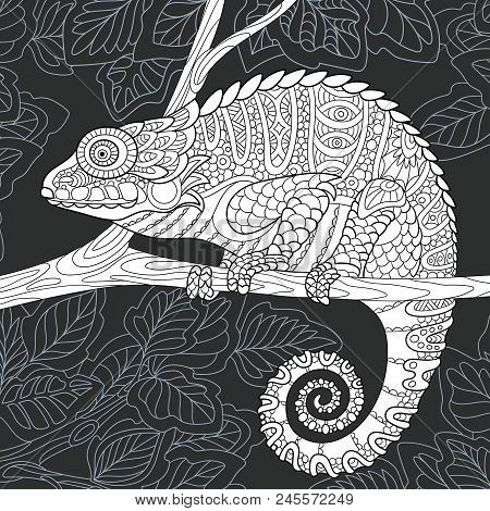 Chameleon Drawn In Line Art Style. Jungle Background In Black And White Colors On Chalkboard. Colori