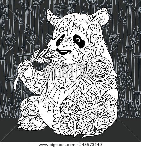 Panda Bear Drawn In Line Art Style. Jungle Background In Black And White Colors On Chalkboard. Color