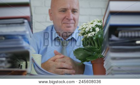 Relax Rd Businessperson Looking To A Flower In Office Room