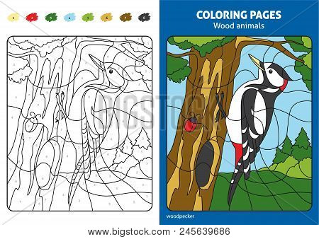 Wood Animals Coloring Page For Kids, Woodpecker In Forest. Printable Design Coloring Book. Coloring