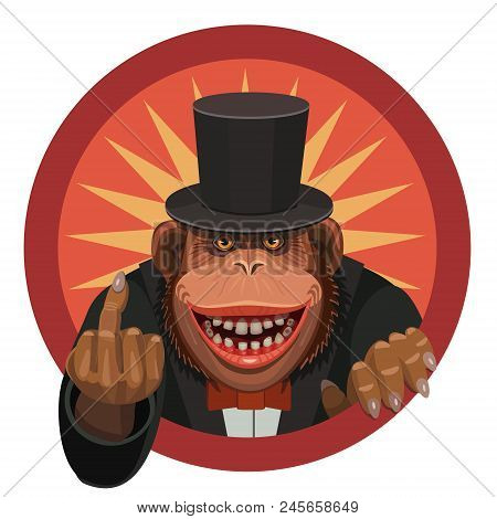 The Monkey Smiles And Shows His Finger To Anyone Who Wants To Hurt Her And Insult Her To Have A Good