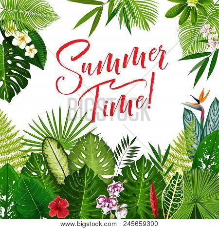 Summer Time Season Poster With Tropical Flower And Exotic Palm Leaf. Summer Holidays And Tropical Be
