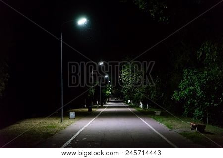 Path Through City Park At Night With Street Lamps.