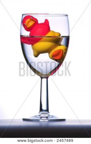 Ducks In Glass