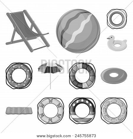 Multicolored Swimming Circle Monochrome Icons In Set Collection For Design. Different Lifebuoys Vect