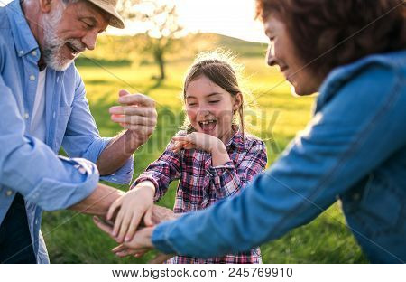 A Happy Small Girl With Her Senior Grandparents Having Fun Outside. Sunset In Spring Nature.