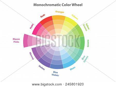 Monochromatic Color Wheel, Color Scheme Theory, Mauve Pinks Color In Evidence, Vector Isolated Or Wh