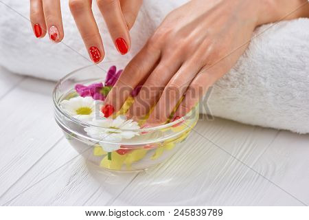 Well Manicured Nails In Spa. Well-groomed Female Hands In Spa Salon. Woman Hands With Beautiful Red