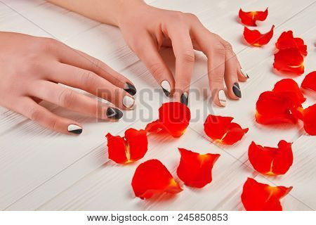 Manicured Hands And Red Petals. Female Hands With Perfect Matte Manicure In Spa Salon. Stylish Manic