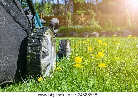 Mowing Lawns. Lawn Mower On Green Grass. Mower Grass Equipment. Mowing Gardener Care Work Tool. Clos