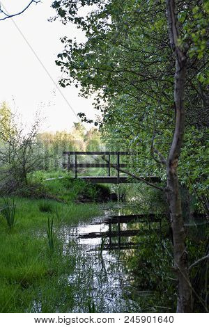 Peaceful View By A Small Stream With An Old Footbridge At The Swedish Island Oland