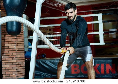 Serious Bearded Man In Sportswear Shaking Heavy Training Ropes While Working Out In Boxing Gym.
