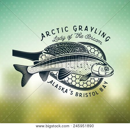 Grayling Fly Fishing Logo. The Lady Of The River Arctic Grayling. Lady Of The Stream.