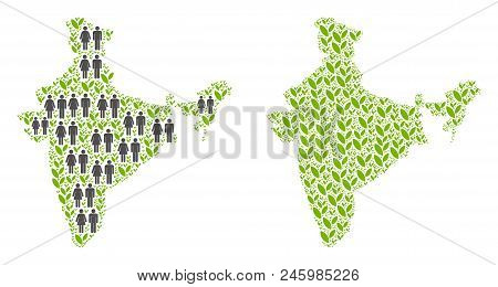 People Population And Floral India Map. Vector Abstraction Of India Map Constructed Of Randomized Hu