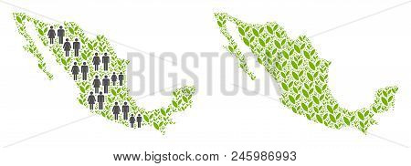 People Population And Flora Plants Mexico Map. Vector Concept Of Mexico Map Created Of Random Human