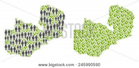 People Population And Flora Plants Zambia Map. Vector Pattern Of Zambia Map Designed Of Scattered Ge