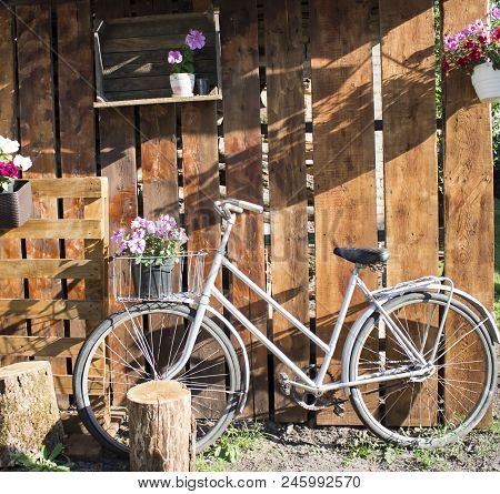 Cyclists Outdoor Lifestyle. Classic Vintage Retro Bicycle Against The Wooden Old Crack Wall At Home.