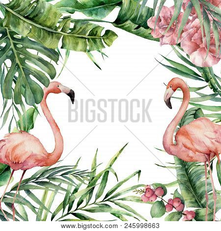 Watercolor Exotic Card With Flamingo. Hand Painted Floral Illustration With Banana And Coconut Palm
