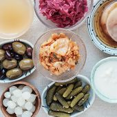 variety of fermented probiotic foods for gut health poster