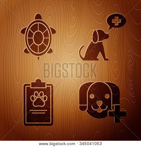 Set Veterinary Clinic Symbol, Turtle, Clipboard With Medical Clinical Record Pet And Veterinary Clin
