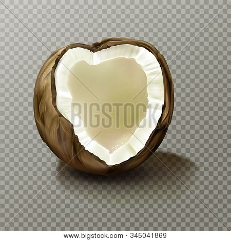 Realistic Coconut, Highly Detailed Empty Cracked Coco Nut Piece With White Flesh And Peel Isolated O