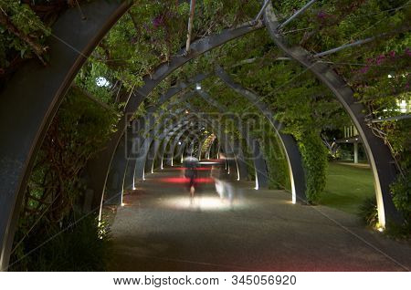 Long Exposure Of People Walking Through The Grand Arbour In South Bank Parklands In Brisbane At Nigh