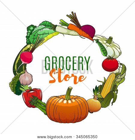 Vegetables, Grocery Store And Farm Market Veggies Poster. Vector Organic Vegetarian Food Cabbage, Co