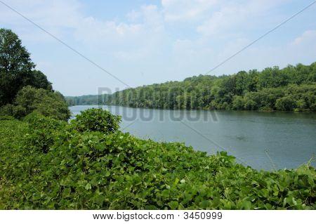 Catawba River View