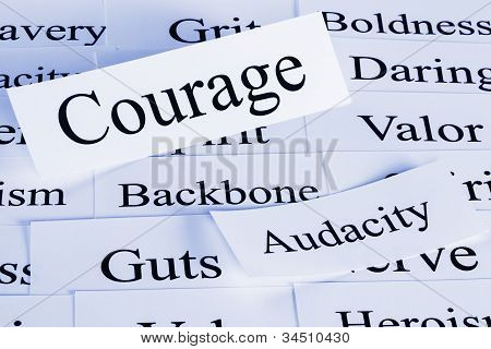A conceptual look at courage backbone audacity guts. poster