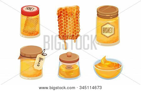 Sugary Honey In Jars And Honey Combs Vector Set