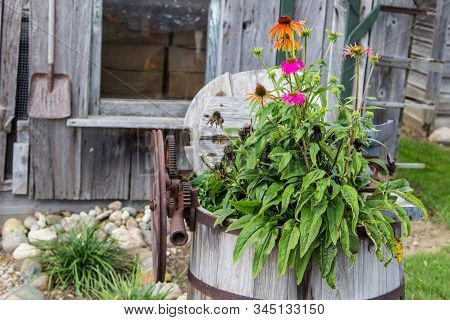Country Style Garden. Potted Plants, Shovel And Small Quaint Wooden Backyard Garden Shed.
