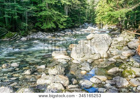 Clear Water Flows Past And Over Rocks In Denny Creek In Washington State.