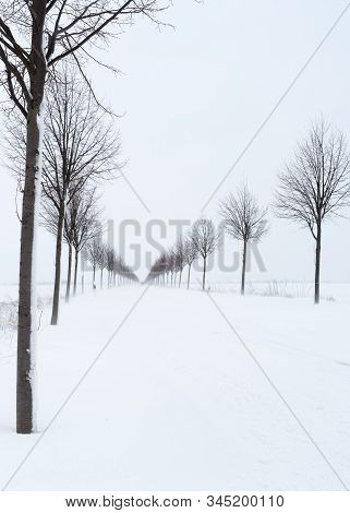 Snowdrifts On The Country Road After A Onset Of Winter