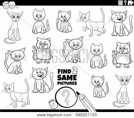 Black And White Cartoon Illustration Of Finding Two Same Pictures Educational Activity Game For Chil